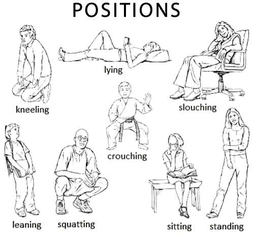 Vocabulary Body Positions English Your Way